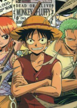 Đảo Hải Tặc - One Piece TV Special 5: Nước mắt hoa tiêu và liên kết giữa những người bạn