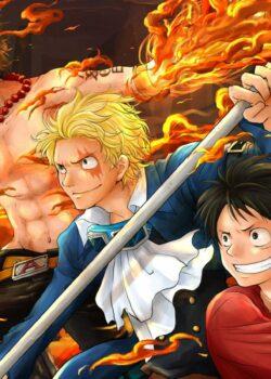 Đảo Hải Tặc - One Piece TV Special 9: Lời hứa của 3 anh em