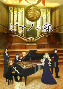 Piano no Mori ss2 - Tiếng Đàn Của Rừng Sâu phần 2